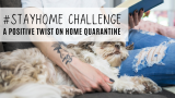 Seize the Opportunity of Home Quarantine: A Stay at Home Challenge Check List